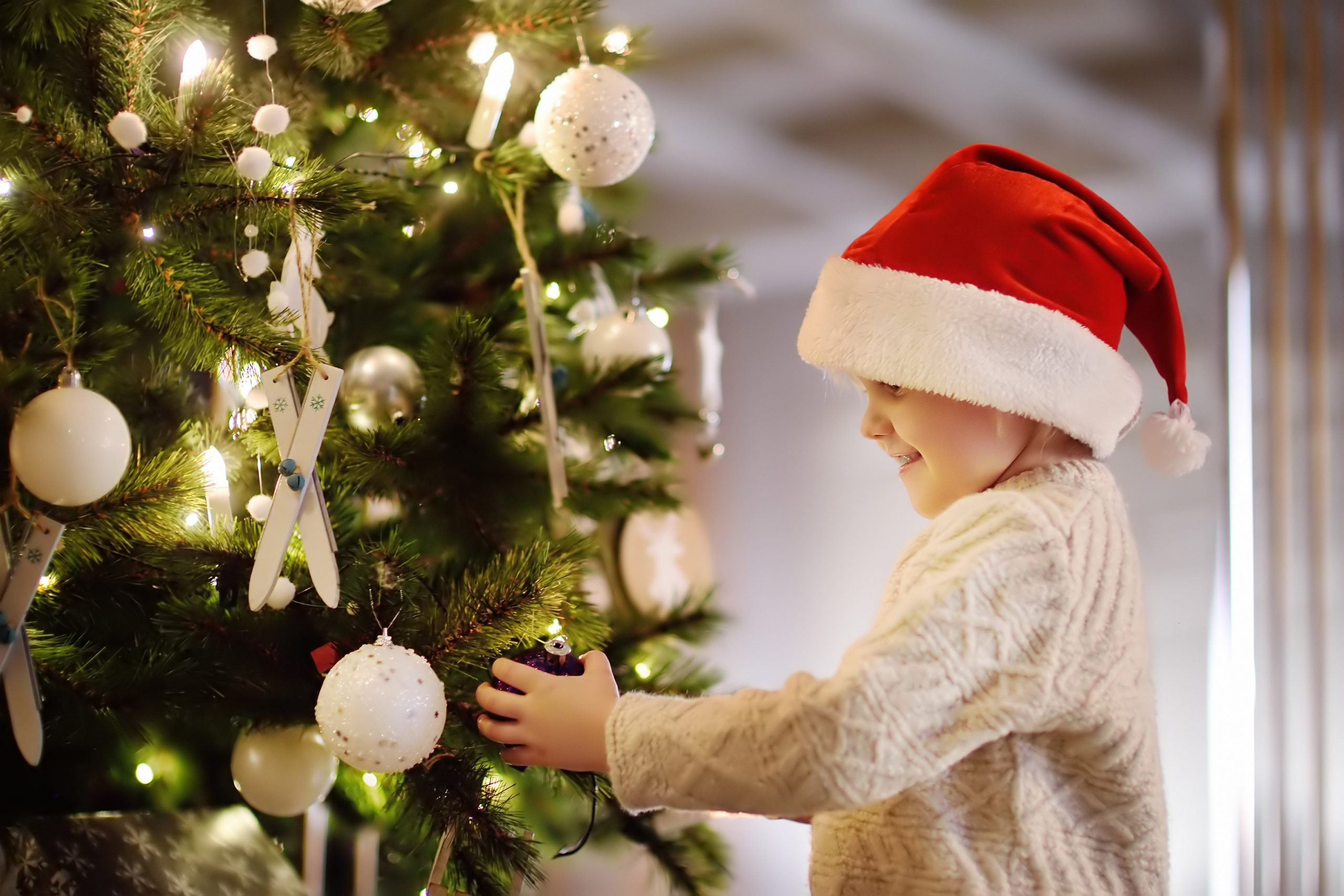 Le sapin de Noël : un incontournable de la féerie de Noël